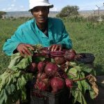 Unemployment turns Jane Furse man into a farmer